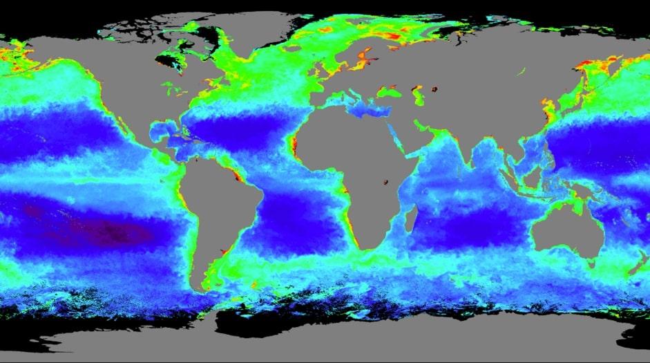 concetration-biomasse-oceans